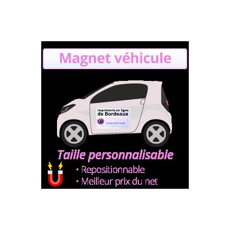 Magnet pour véhicule